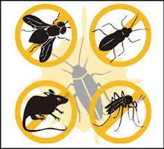 Disinfezione della rete di fognatura nera